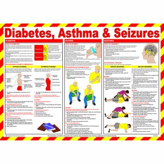 Safety First Aid Diabetes, Asthma and Seizures Poster, Laminated